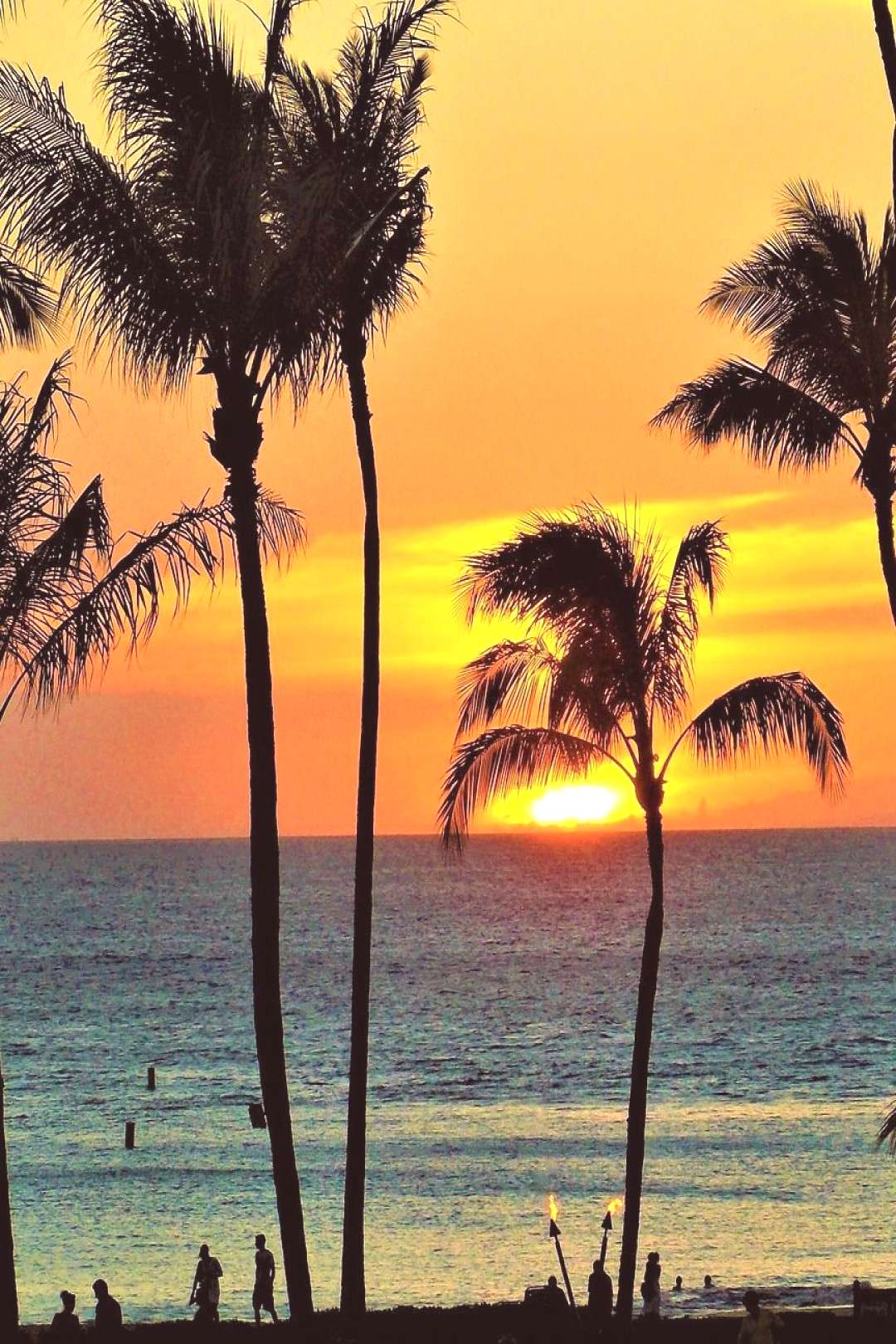 Planning your vacation in Hawaii airports and accommodation -  -